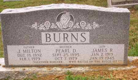 BURNS, J MILTON - Columbiana County, Ohio | J MILTON BURNS - Ohio Gravestone Photos