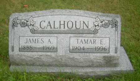 CALHOUN, TAMAR E - Columbiana County, Ohio | TAMAR E CALHOUN - Ohio Gravestone Photos