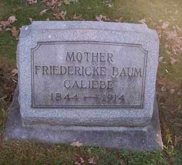 BAUM CALIEBE, FRIEDERICKE - Columbiana County, Ohio | FRIEDERICKE BAUM CALIEBE - Ohio Gravestone Photos