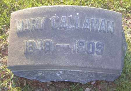 CALLAHAN, MARY - Columbiana County, Ohio | MARY CALLAHAN - Ohio Gravestone Photos