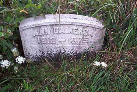 CAMERON, ANN - Columbiana County, Ohio   ANN CAMERON - Ohio Gravestone Photos