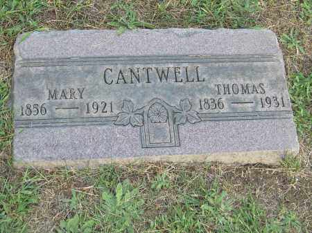 CANTWELL, MARY - Columbiana County, Ohio | MARY CANTWELL - Ohio Gravestone Photos