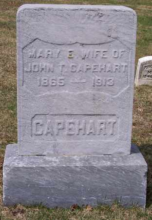 CAPEHART, MARY E. - Columbiana County, Ohio | MARY E. CAPEHART - Ohio Gravestone Photos