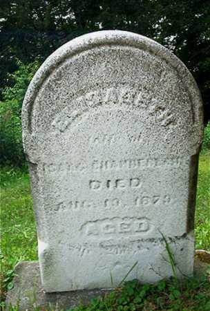 CHAMBERLAIN, ELIZABETH - Columbiana County, Ohio | ELIZABETH CHAMBERLAIN - Ohio Gravestone Photos