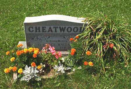 CHEATWOOD, O. GRACE - Columbiana County, Ohio | O. GRACE CHEATWOOD - Ohio Gravestone Photos