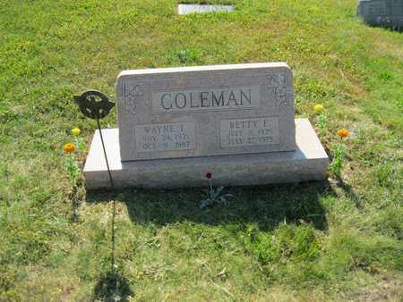 ELKINS COLEMAN, BETTY EILEEN - Columbiana County, Ohio | BETTY EILEEN ELKINS COLEMAN - Ohio Gravestone Photos