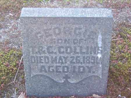 COLLINS, GEORGIE - Columbiana County, Ohio | GEORGIE COLLINS - Ohio Gravestone Photos