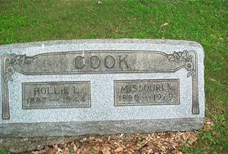 COOK, HOLLIE L. - Columbiana County, Ohio | HOLLIE L. COOK - Ohio Gravestone Photos