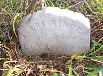 CRISSINGER, LUCY - Columbiana County, Ohio   LUCY CRISSINGER - Ohio Gravestone Photos