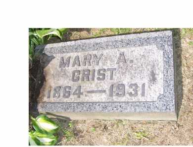 CRIST, MARY - Columbiana County, Ohio | MARY CRIST - Ohio Gravestone Photos