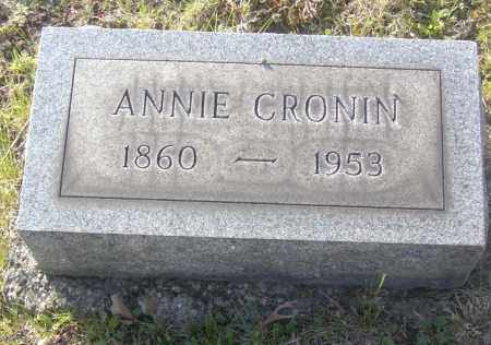 CRONIN, ANNIE - Columbiana County, Ohio | ANNIE CRONIN - Ohio Gravestone Photos