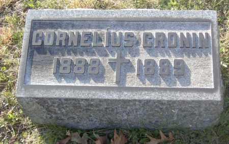 CRONIN, CORNELIUS - Columbiana County, Ohio | CORNELIUS CRONIN - Ohio Gravestone Photos
