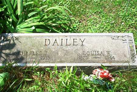 DAILEY, LOUISE W. - Columbiana County, Ohio | LOUISE W. DAILEY - Ohio Gravestone Photos