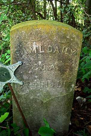 DAILY, SAMUEL - Columbiana County, Ohio   SAMUEL DAILY - Ohio Gravestone Photos