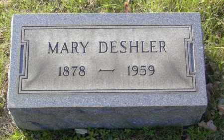 DESHLER, MARY - Columbiana County, Ohio | MARY DESHLER - Ohio Gravestone Photos