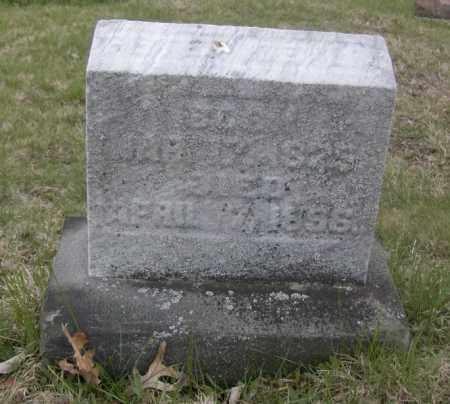 DEVLIN, PETER - Columbiana County, Ohio | PETER DEVLIN - Ohio Gravestone Photos