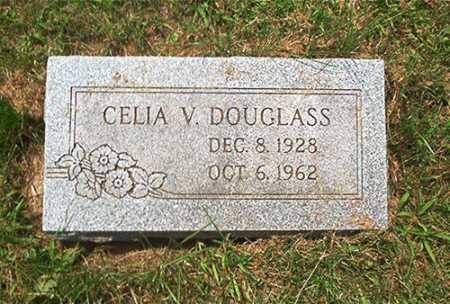 DOUGLASS, CELIA V. - Columbiana County, Ohio | CELIA V. DOUGLASS - Ohio Gravestone Photos