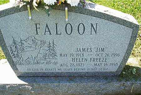 FALOON, JAMES - Columbiana County, Ohio | JAMES FALOON - Ohio Gravestone Photos