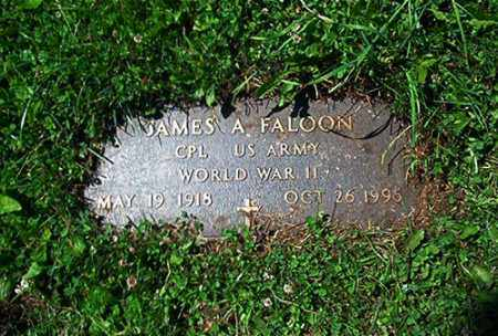 FALOON, JAMES A. - Columbiana County, Ohio | JAMES A. FALOON - Ohio Gravestone Photos