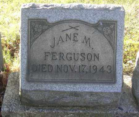 FERGUSON, JANE M. - Columbiana County, Ohio | JANE M. FERGUSON - Ohio Gravestone Photos