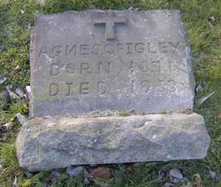 CURRAN FIGLEY, AGNES - Columbiana County, Ohio | AGNES CURRAN FIGLEY - Ohio Gravestone Photos