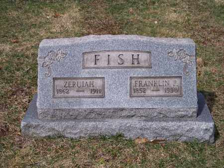 FISH, ZERUIAH - Columbiana County, Ohio | ZERUIAH FISH - Ohio Gravestone Photos