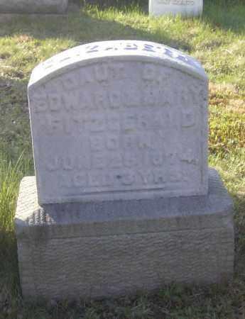 FITZGERALD, ELIZABETH - Columbiana County, Ohio | ELIZABETH FITZGERALD - Ohio Gravestone Photos