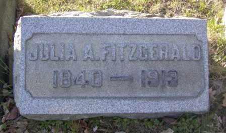 FITZGERALD, JULIA A. - Columbiana County, Ohio | JULIA A. FITZGERALD - Ohio Gravestone Photos