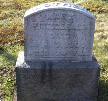 FITZGERALD, MARY - Columbiana County, Ohio | MARY FITZGERALD - Ohio Gravestone Photos
