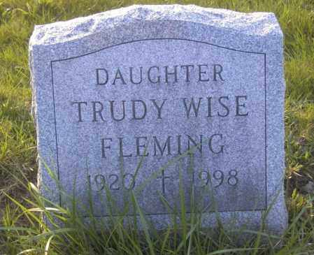 FLEMMING, TRUDY WISE - Columbiana County, Ohio | TRUDY WISE FLEMMING - Ohio Gravestone Photos
