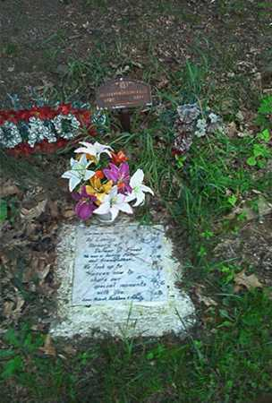 FREED, DELMAR J. - Columbiana County, Ohio | DELMAR J. FREED - Ohio Gravestone Photos