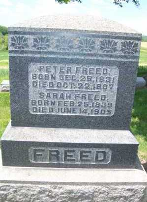 FREED, PETER - Columbiana County, Ohio | PETER FREED - Ohio Gravestone Photos