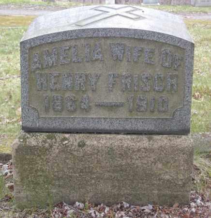 FRISCH, AMELIA - Columbiana County, Ohio | AMELIA FRISCH - Ohio Gravestone Photos