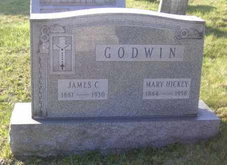 GODWIN, JAMES C. - Columbiana County, Ohio | JAMES C. GODWIN - Ohio Gravestone Photos