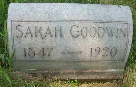 GOODWIN, SARAH - Columbiana County, Ohio | SARAH GOODWIN - Ohio Gravestone Photos