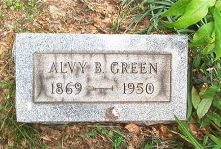 GREEN, ALVY B. - Columbiana County, Ohio | ALVY B. GREEN - Ohio Gravestone Photos
