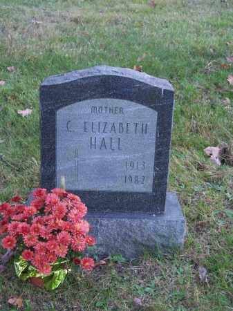 HALL, C. ELIZABETH - Columbiana County, Ohio | C. ELIZABETH HALL - Ohio Gravestone Photos