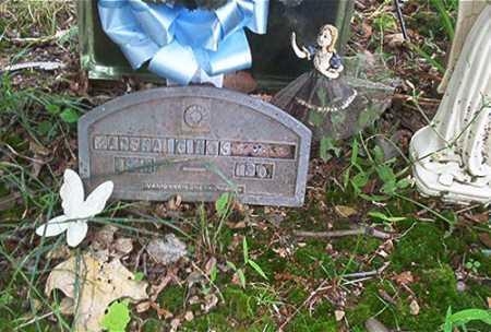 HART, MARSHA G. - Columbiana County, Ohio | MARSHA G. HART - Ohio Gravestone Photos