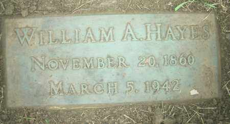 HAYES, WILLIAM ADAM - Columbiana County, Ohio | WILLIAM ADAM HAYES - Ohio Gravestone Photos