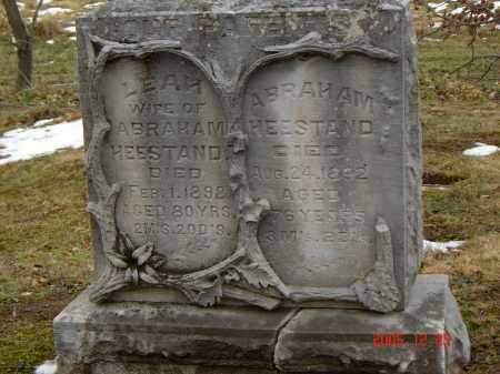 HEESTAND, LEAH - Columbiana County, Ohio | LEAH HEESTAND - Ohio Gravestone Photos