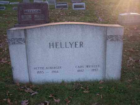 AUGERGER HELLYER, NETTIE - Columbiana County, Ohio | NETTIE AUGERGER HELLYER - Ohio Gravestone Photos