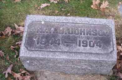 JOHNSON, ANNA B. - Columbiana County, Ohio | ANNA B. JOHNSON - Ohio Gravestone Photos