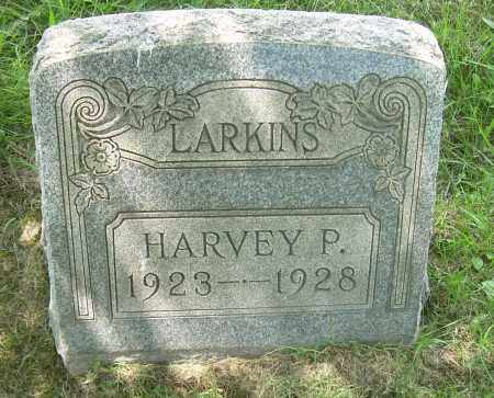 LARKINS, HARVEY P - Columbiana County, Ohio | HARVEY P LARKINS - Ohio Gravestone Photos