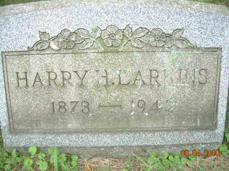 LARKINS, HARRY H - Columbiana County, Ohio | HARRY H LARKINS - Ohio Gravestone Photos