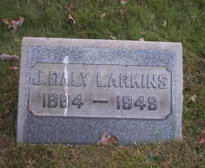 LARKINS, J. DALY - Columbiana County, Ohio | J. DALY LARKINS - Ohio Gravestone Photos