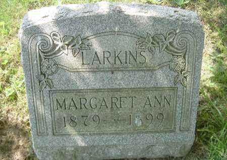 LARKINS, MARGARET ANN - Columbiana County, Ohio | MARGARET ANN LARKINS - Ohio Gravestone Photos