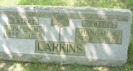 LARKINS, HANNAH M - Columbiana County, Ohio | HANNAH M LARKINS - Ohio Gravestone Photos