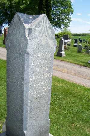 LOWER, HENRY - Columbiana County, Ohio   HENRY LOWER - Ohio Gravestone Photos