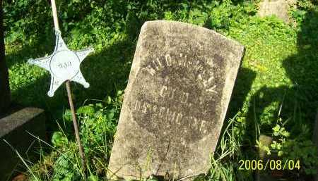 MCNELY, MILO - Columbiana County, Ohio | MILO MCNELY - Ohio Gravestone Photos