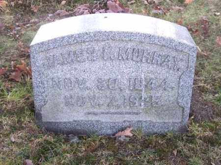 MURRAY, JAMES - Columbiana County, Ohio | JAMES MURRAY - Ohio Gravestone Photos